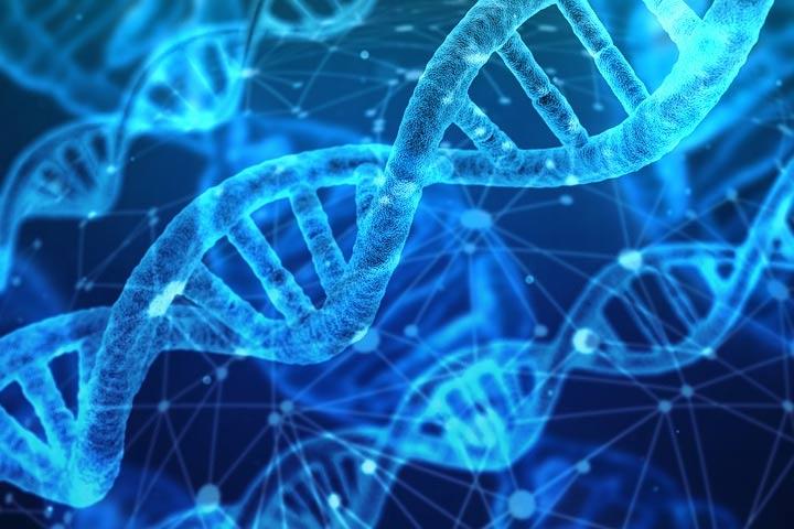 Curso Introducción a la Bioinformática para Investigación Biomédica